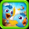 Birds Race