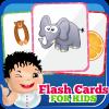 Flash Cards Vol 01